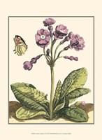 Garden Vignette I Fine-Art Print