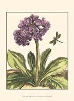 Garden Vignette III Fine-Art Print