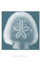 Coastal Menagerie IV Fine-Art Print