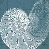 Coastal Menagerie VI Fine-Art Print