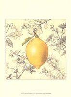 Lemon and Botanicals Fine-Art Print