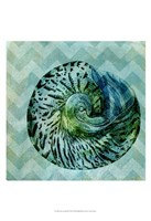 Chevron Shell II Fine-Art Print