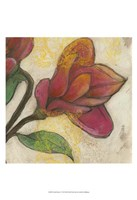 Tulip Poplar II Fine-Art Print
