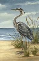 Shore Bird II Fine-Art Print