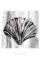 Black Shell I Fine-Art Print
