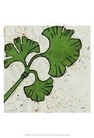 Planta Green VI Fine-Art Print