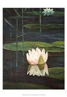 Tranquility I Fine-Art Print