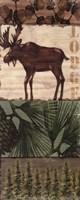 Nature Trail III Fine-Art Print