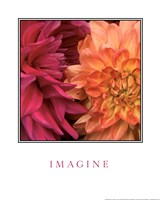 Imagine Flowers Fine-Art Print