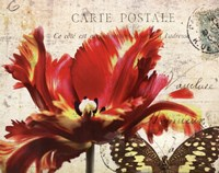 Carte Postale Tulip I Fine-Art Print