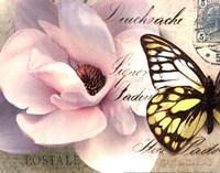 Carte Postale Magnolia II Fine-Art Print