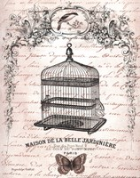 French Birdcage II Fine-Art Print