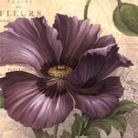 Purple Garden I - mini Fine-Art Print