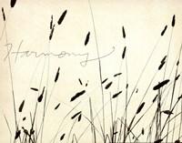 Grass Harmony Fine-Art Print