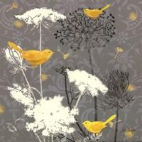 Gray Meadow Lace II Fine-Art Print