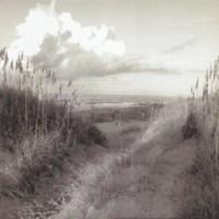 Dunes I Sq. BW Fine-Art Print
