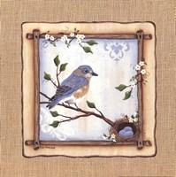Bluebird Nest Fine-Art Print