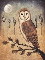 Barn Owl Fine-Art Print