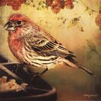 Frequent Visitor Fine-Art Print