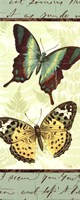 Butterfly Patchwork I Fine-Art Print