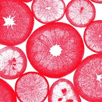 Red Lemon Slices Fine-Art Print