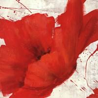 Petite Rouge I Fine-Art Print