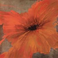 Colourful Flowers IV Fine-Art Print