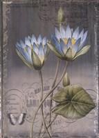 Black Botanical I Fine-Art Print