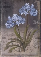 Black Botanical II Fine-Art Print