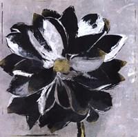 Black And White Digressions III Fine-Art Print