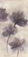 Prussian Grace II Fine-Art Print
