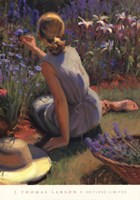 Catmint & Cornflowers Fine-Art Print
