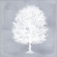 Dream Tree II Fine-Art Print