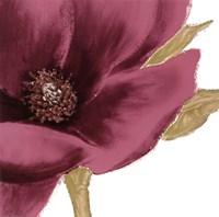 Grandiflora Blush I Fine-Art Print