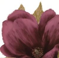 Grandiflora Blush II Fine-Art Print