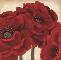 Red Peony II Fine-Art Print