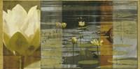 Lotus Panel I Framed Print