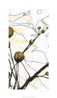 Willow Blooms I Fine-Art Print