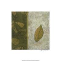 Earthen Textures XIII Fine-Art Print