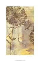 Dandelion Dance I Fine-Art Print