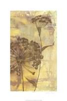 Dandelion Dance II Fine-Art Print