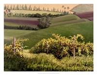 Chianti Hills Fine-Art Print