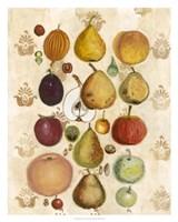Edible Botanical II Fine-Art Print