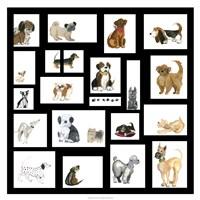 Doggie Grid Fine-Art Print