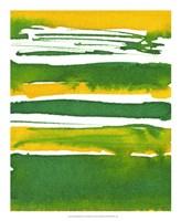 Saturated Spring II Fine-Art Print