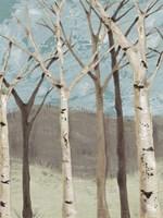 Blue Birches I Fine-Art Print
