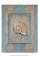 Shell & Damask Stripe I Fine-Art Print