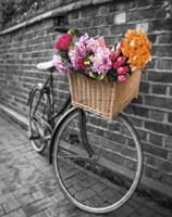 Basket of Flowers II Fine-Art Print