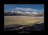 Lac BlancSal de Tso Kar Fine-Art Print