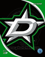 Dallas Stars 2013 Team Logo Fine-Art Print